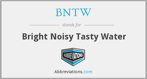 BNTW - Bright Noisy Tasty Water