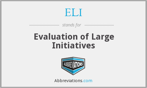 ELI - Evaluation of Large Initiatives