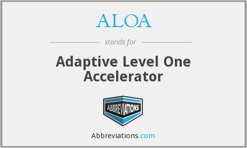 ALOA - Adaptive Level One Accelerator