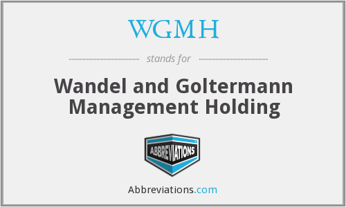 WGMH - Wandel and Goltermann Management Holding
