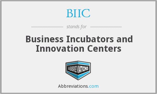 BIIC - Business Incubators and Innovation Centers