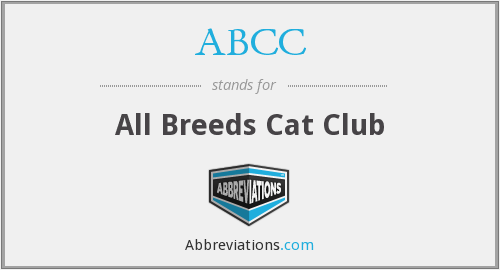 ABCC - All Breeds Cat Club