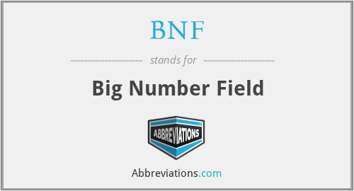 BNF - Big Number Field