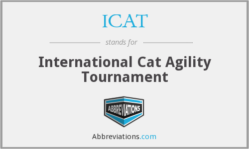 ICAT - International Cat Agility Tournament