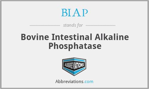 BIAP - Bovine Intestinal Alkaline Phosphatase