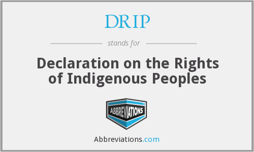 DRIP - Declaration on the Rights of Indigenous Peoples