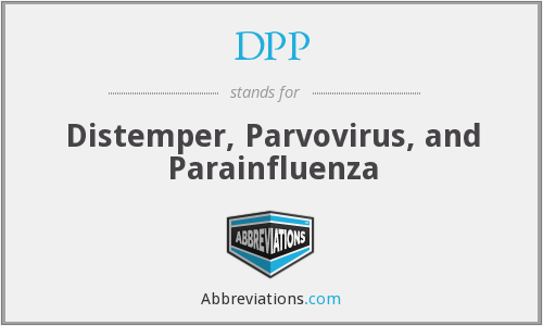 DPP - Distemper, Parvovirus, and Parainfluenza