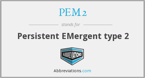 PEM2 - Persistent EMergent type 2