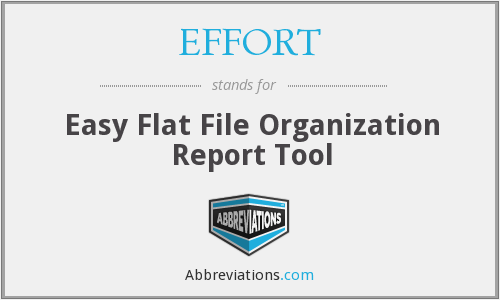 EFFORT - Easy Flat File Organization Report Tool