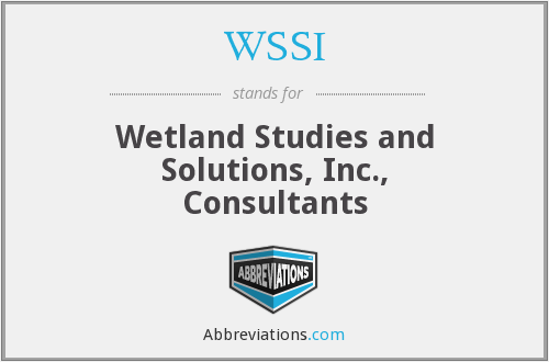 WSSI - Wetland Studies and Solutions, Inc., Consultants