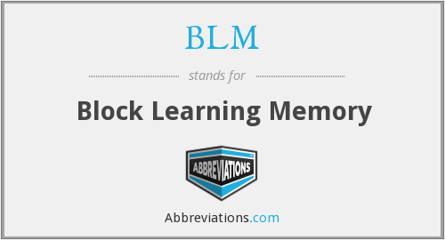 BLM - Block Learning Memory