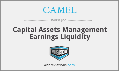 CAMEL - Capital Assets Management Earnings Liquidity