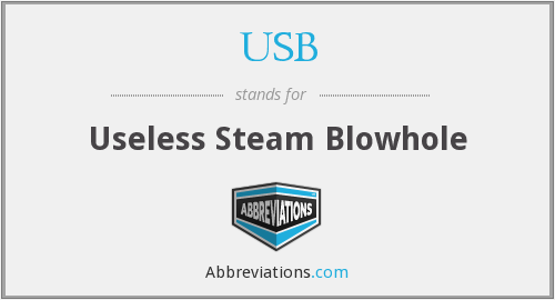 USB - Useless Steam Blowhole