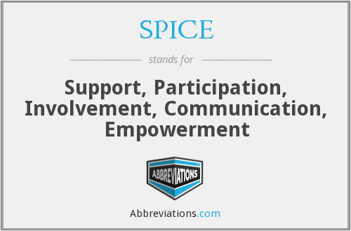 What does SPICE stand for?