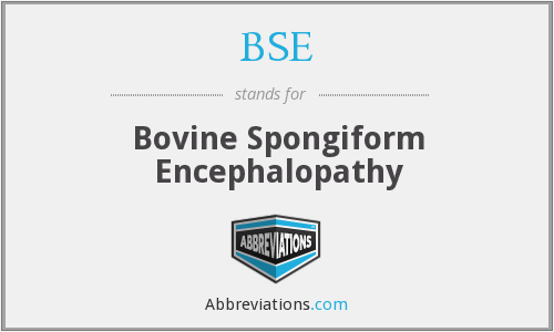 BSE - Bovine Spongiform Encephalopathy