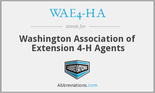 What does WAE4-HA stand for?