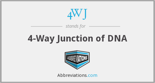 4WJ - 4-Way Junction of DNA