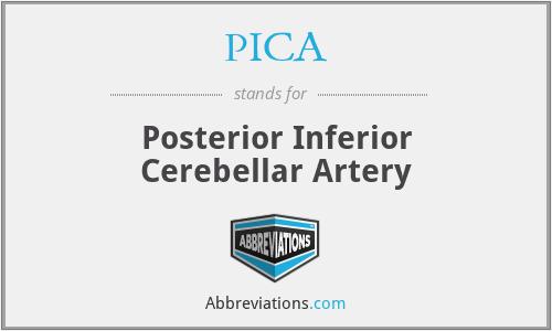 PICA - Posterior Inferior Cerebellar Artery