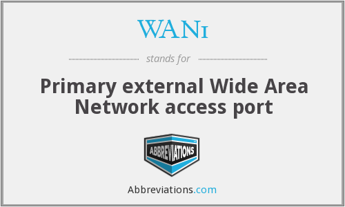 WAN1 - Primary external Wide Area Network access port