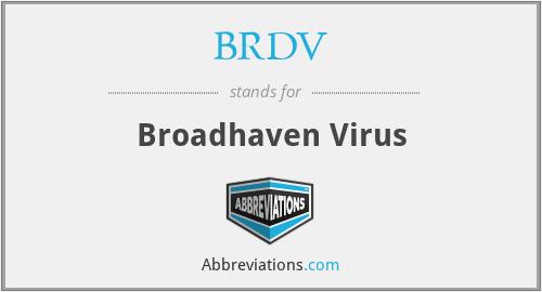 BRDV - Broadhaven Virus