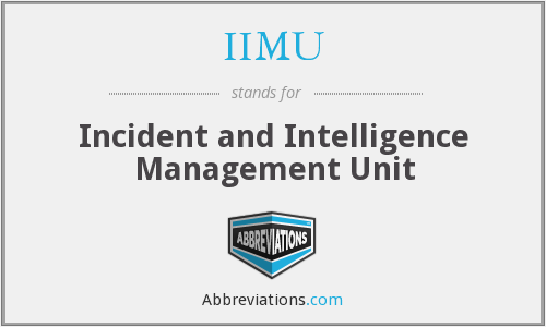 What does IIMU stand for?