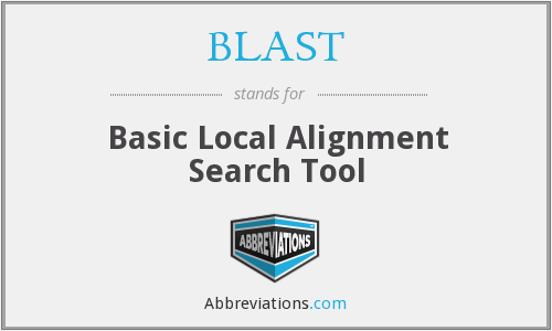 What does BLAST stand for?