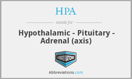HPA - Hypothalamic - Pituitary - Adrenal (axis)