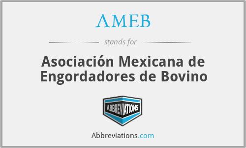 AMEB - Asociación Mexicana de Engordadores de Bovino