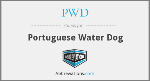 PWD - Portuguese Water Dog