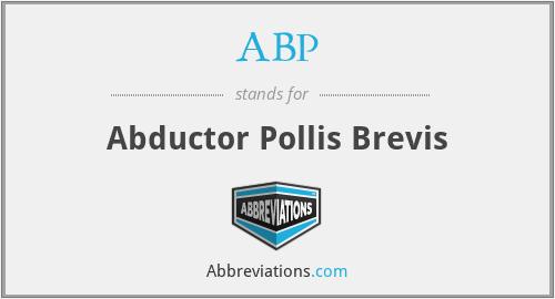 ABP - Abductor Pollis Brevis