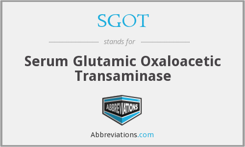 What is the abbreviation for Serum Glutamic Oxaloacetic