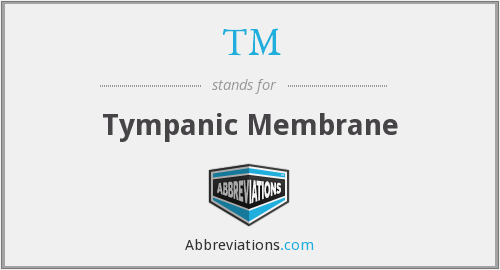 TM - Tympanic Membrane