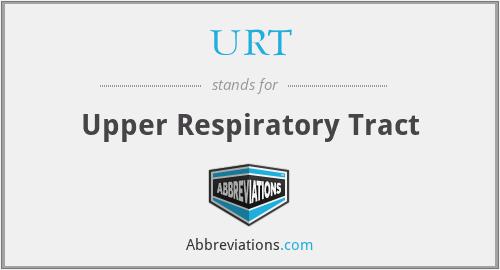 URT - Upper Respiratory Tract