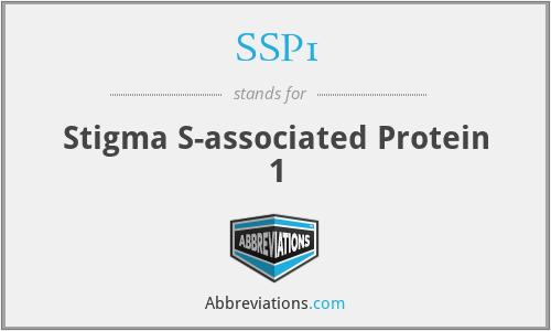 SSP1 - Stigma S-associated Protein 1