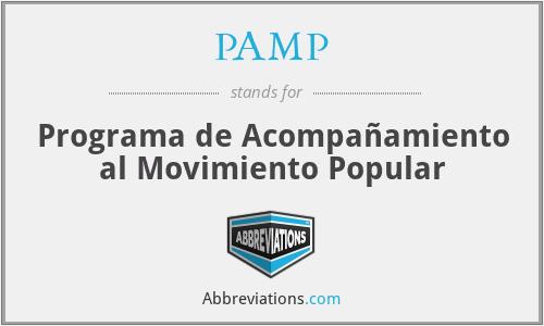 PAMP - Programa de Acompañamiento al Movimiento Popular