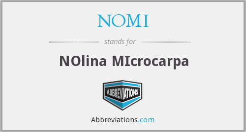 What does NOMI stand for?