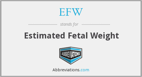 EFW - Estimated Fetal Weight