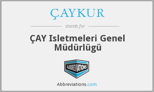 What does ÇAYKUR stand for?