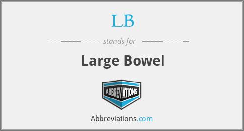 LB - Large Bowel