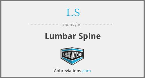 LS - Lumbar Spine