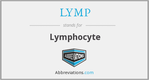 LYMP - Lymphocyte