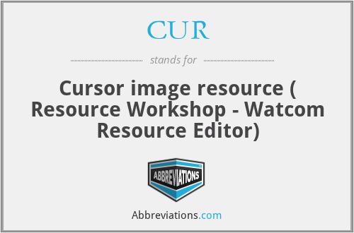 CUR - Cursor image resource ( Resource Workshop - Watcom Resource Editor)