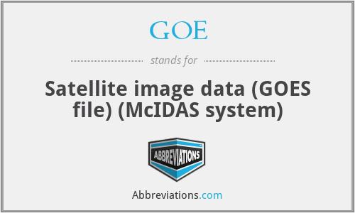 GOE - Satellite image data (GOES file) (McIDAS system)