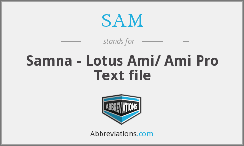 SAM - Samna - Lotus Ami/ Ami Pro Text file