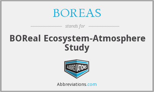 What does BOREAS stand for?