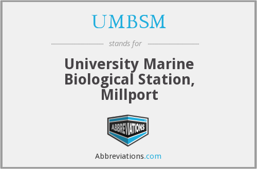 What does UMBSM stand for?