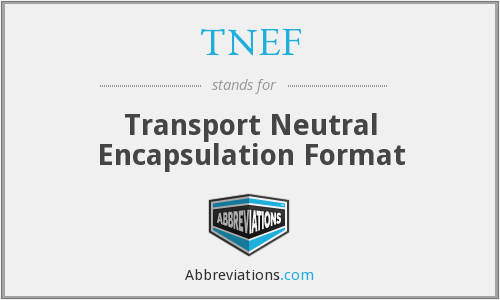 What does TNEF stand for?