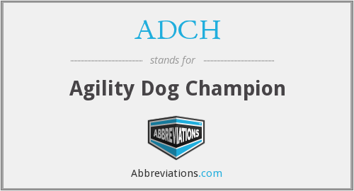 ADCH - Agility Dog Champion