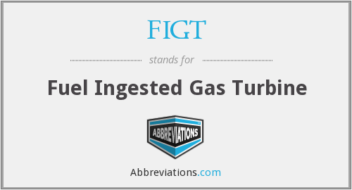 FIGT - Fuel Ingested Gas Turbine