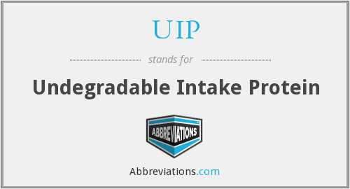 UIP - Undegradable Intake Protein